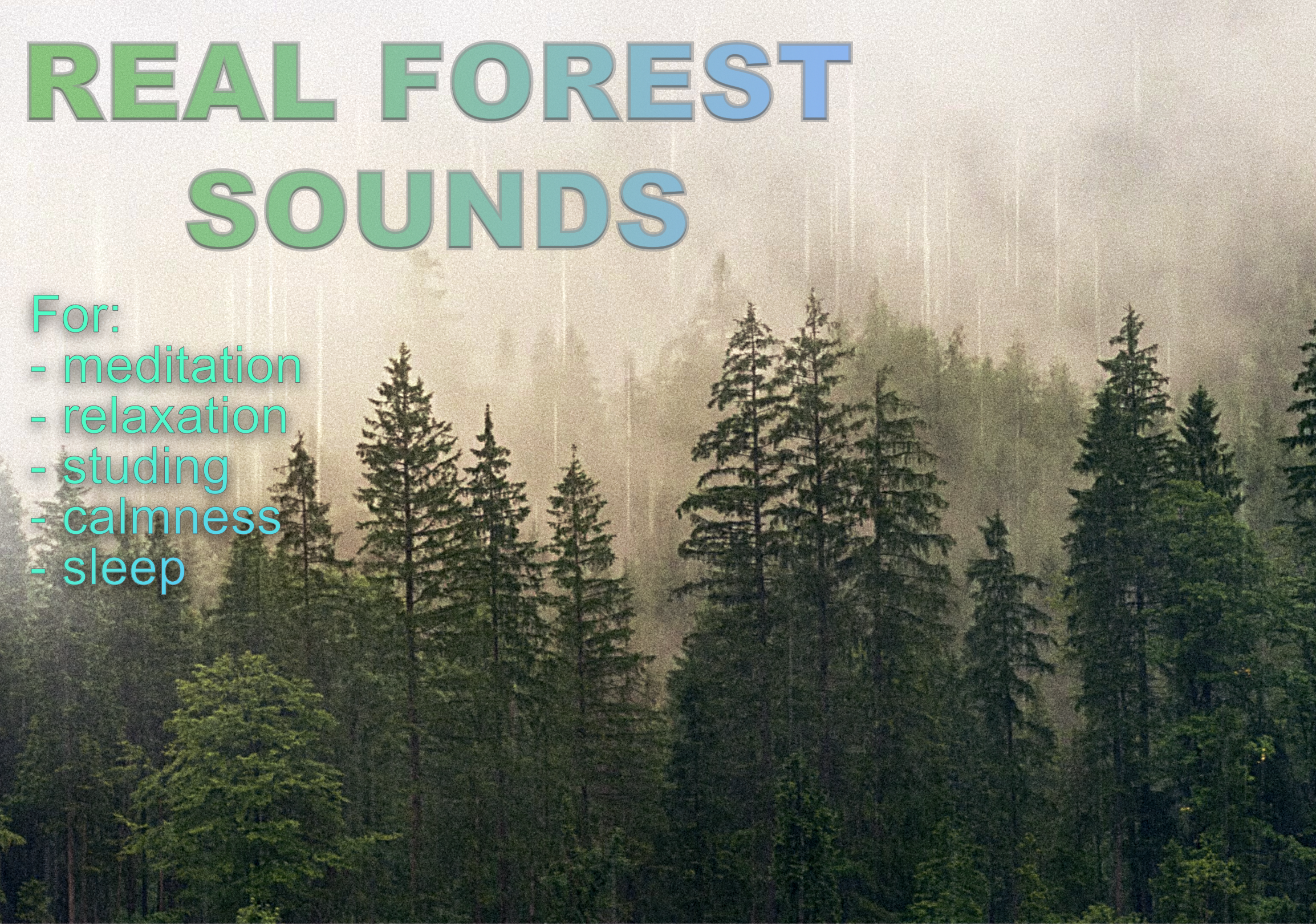I recorded the sounds of the forest in. Stereo sounds for relaxing. 33min meditation video
