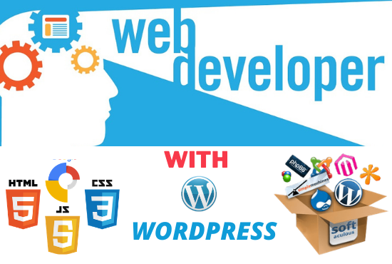 I will create wordpress website or customized as your requirements
