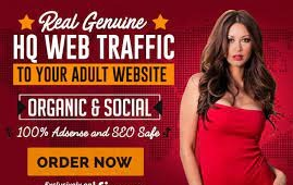 Adult Real Traffic Worldwide Google keyword From Top Adult Search engine Web Visitors