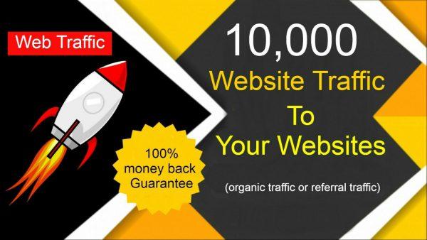 Real 10,000 Human Keyword Visitors From Google, Social Media Web Traffic