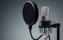 I will write 500 words of very high quality on any topic and voice over