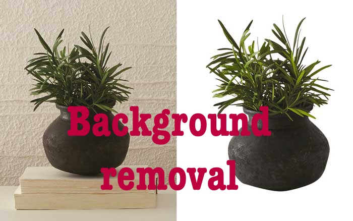 Background removal of preferred image you desired at express. All you need do is provide the image.