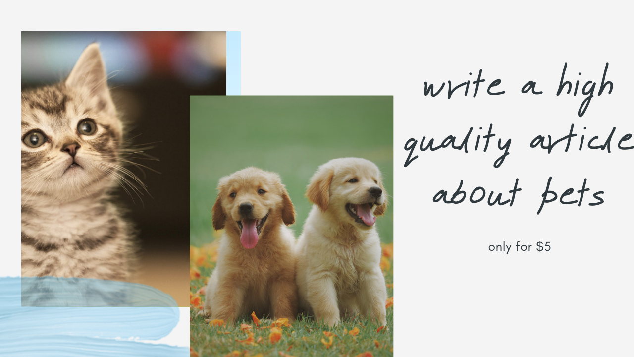 I will write a high quality article about pets