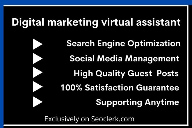 I will be your digital marketing virtual assistant professionally