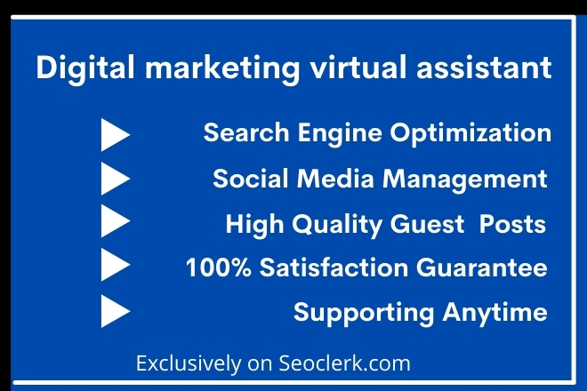 I will be a personal virtual assistant to support digital marketing, social media, Dta Entry
