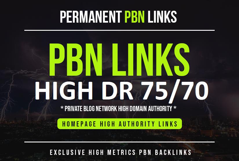 build 5 homepage pbn DA 70+ links