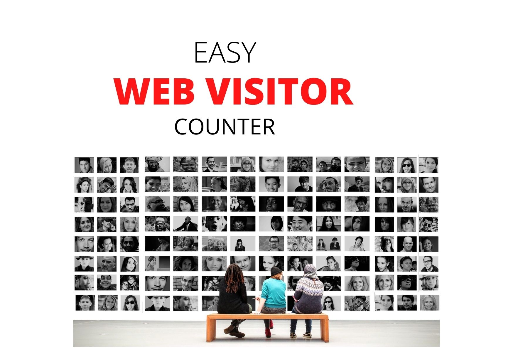 Easy Web Visitor counter - Discover exactly how many people are visiting