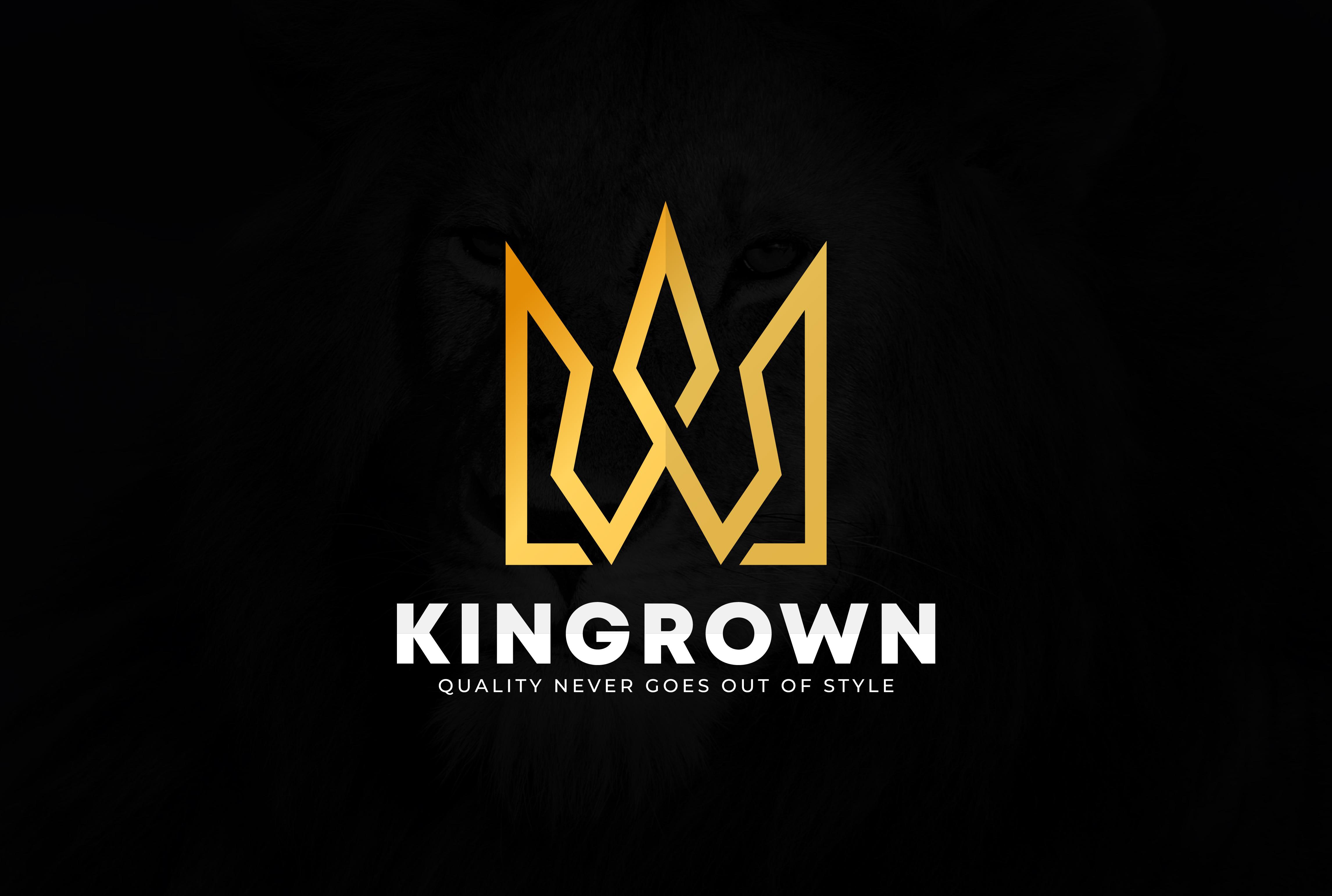 I will modern minimalist custom logo design in your company