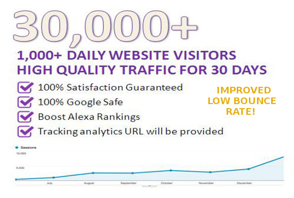 Daily Real Visitors For Your Website