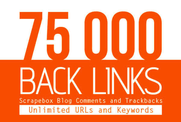 I will build 75,000 blog comments for powering your links to rank your website