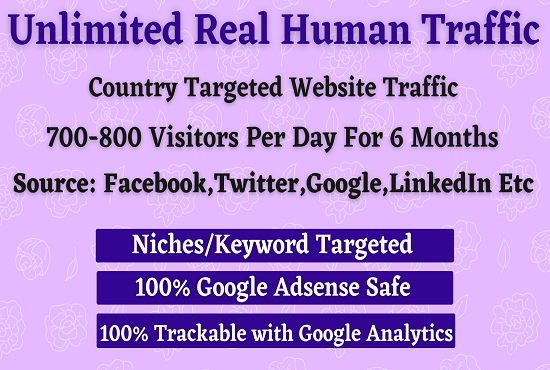 Unlimited Real Human Organic Website Country Targeted Traffic