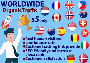 Real Organic Keyword Targeted Web Traffic Daily Visitors