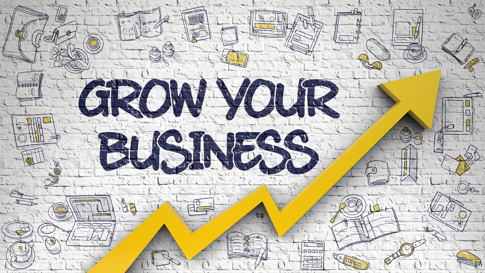 Video Training Courses to learn Business learn how to grow your business