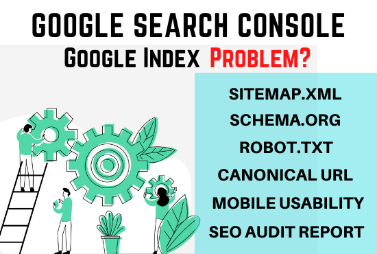 I will fix search console and google index errors,  Technical SEO