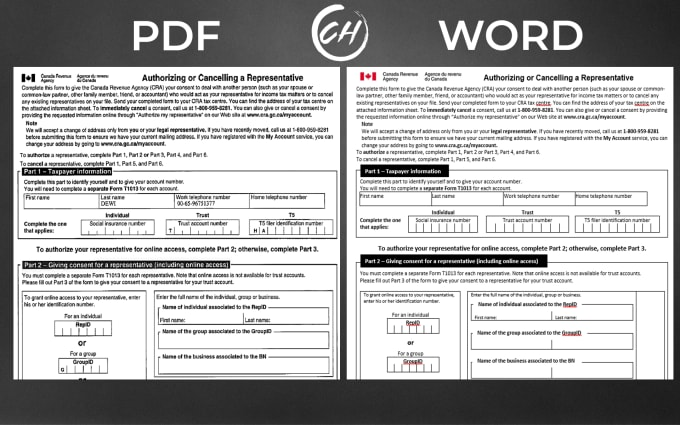 I will fast and prefect PDF to word and Data entry