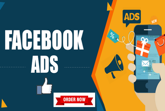 I will be your Facebook ads campaign manager,  fb ad campaign,  fb advertising expert