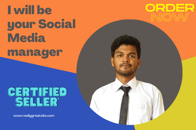 i will be your social media manager for virtual work