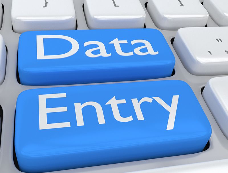 I will do accurate and timely data entry