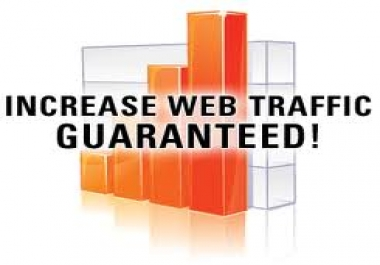 deliver TRAFFIC to your website till 365 days