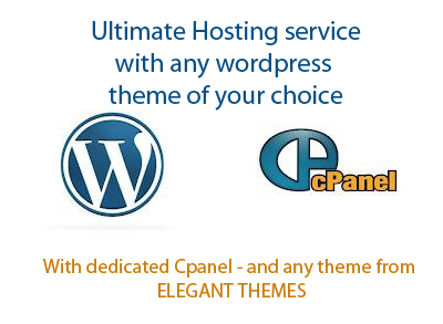 offer you unlimited hosting with wordpress installation and any theme of your choice