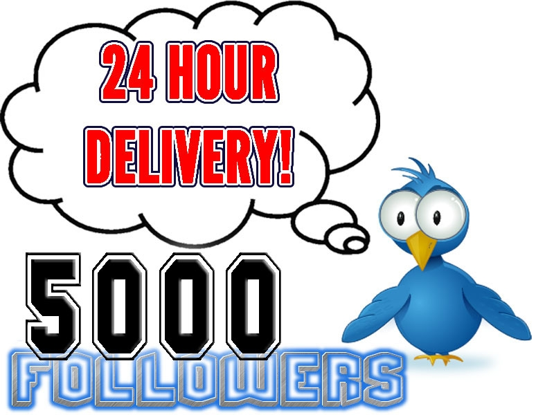 give you 30000+twitter followers very fast  in your twitter account