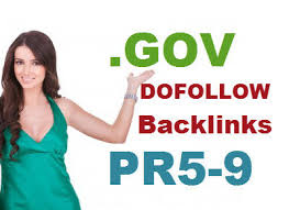 101+ High quality Gov backlink on PR9-PR5 + more bonus over 15-20 wiki backlink with ping and report