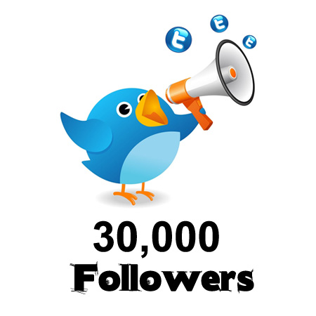 Give you 4000 Twitter followers in 24 hours