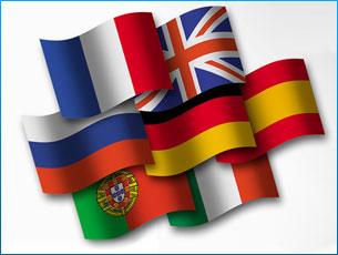 translate from Spanish/German/French/Serbian/Croatian/Bosnian to English
