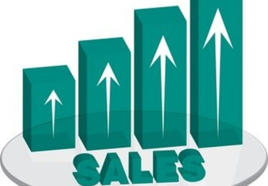 do an analysis of your website in a VIDEO providing recommendations to increase sales to more money