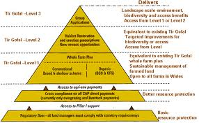 ??build a super diverse link pyramid for your site, It is almost guaranteed that your site will rank on the first page of google within 30days for