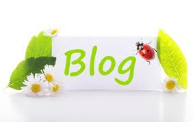 provide BLAST 49 Backlinks 2XPR7 2XPR6 10XPR5 10XPR4 25XPR3,2 From Blog Comment fo