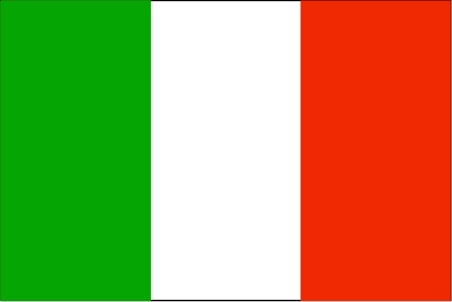 I will translate your document from english to italian