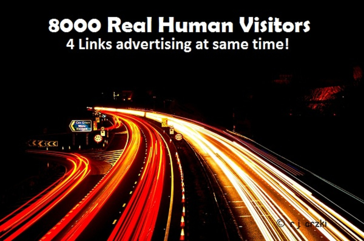 send Unique Real Human Visitors to your Link