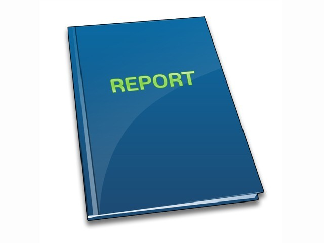 write a 20 page report on any niche for