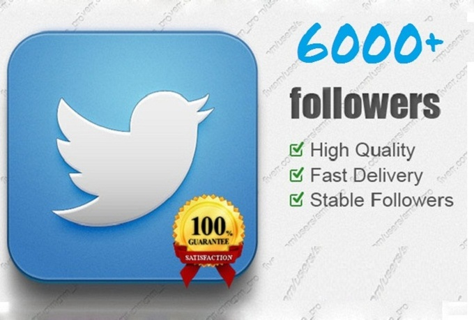give you 6000 Tiwtter Followers