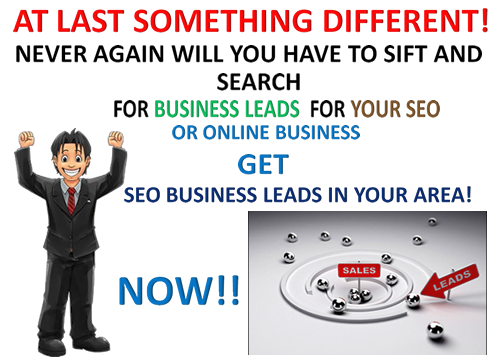 Get Laser Targeted Business SEO Leads - for any type of business within any ZIP /Postal Code!