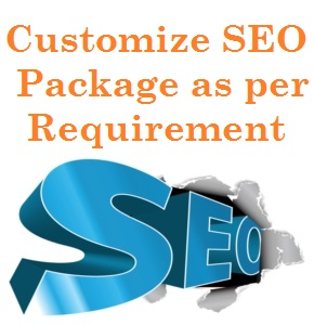 create Full SEO Customized Package for your website