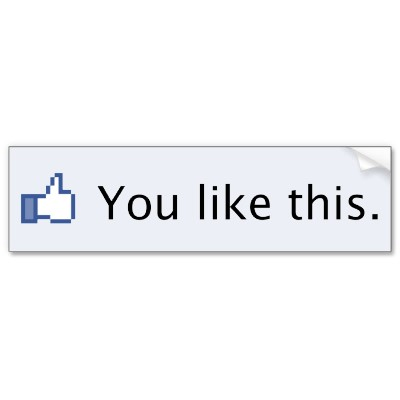 I will give you 3000+ Like on your facebook page