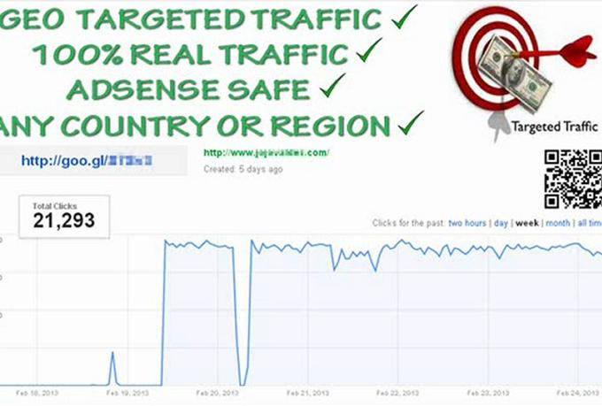 send 5000 GEO Targeted Visitors to your Website or Url