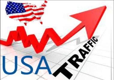 send 1001 USA visitors only to your website for 2 day