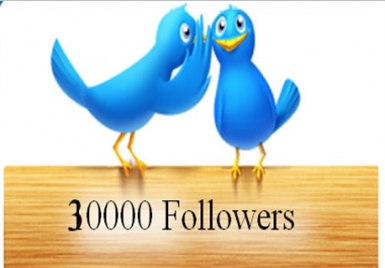 I will get you 30000+ twitter followers for $11