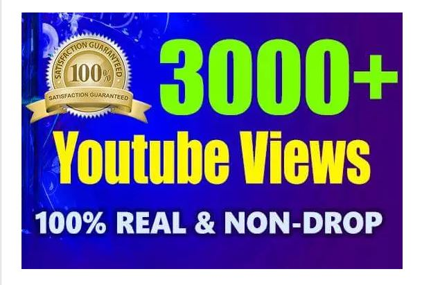 2000 All in one YOUTUBE and Social media video and website promoting Services