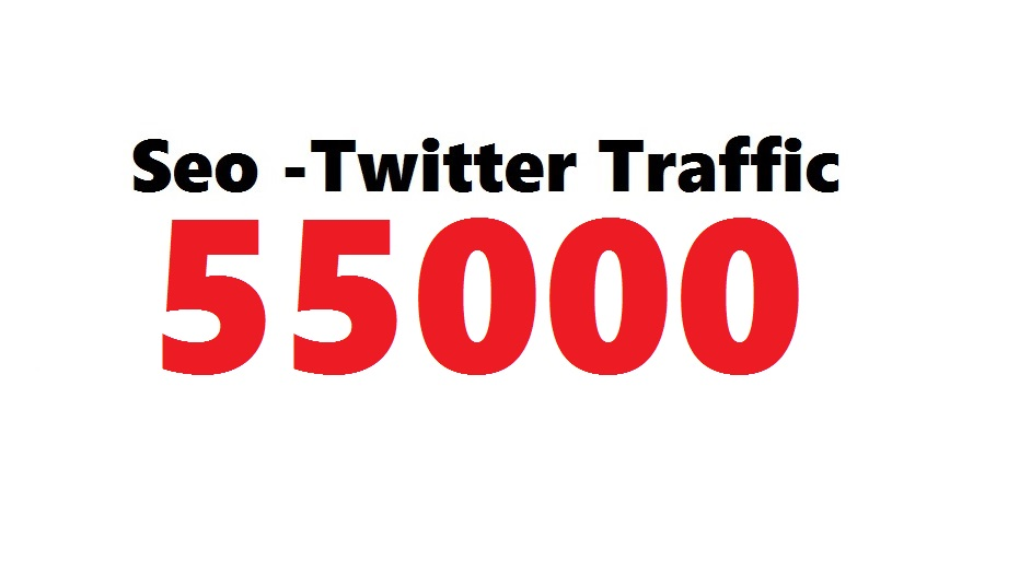 FAST 55000 Seo Twitter Traffic