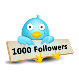 I will give you 1000 High Quality twitter followers