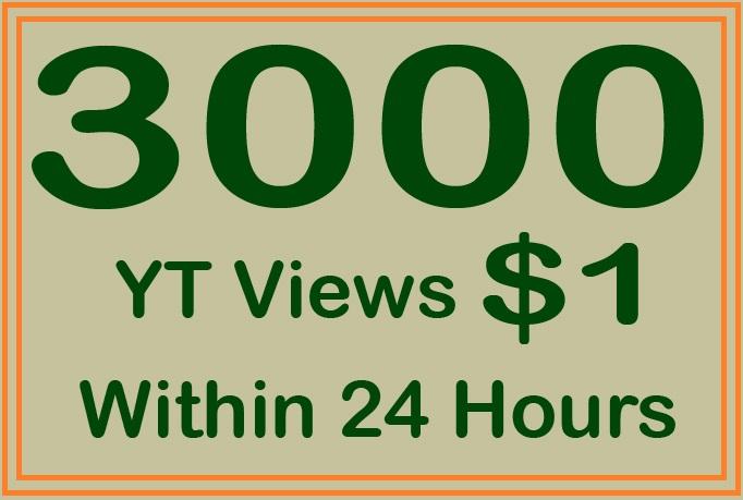 3000 Non Drop YT Views