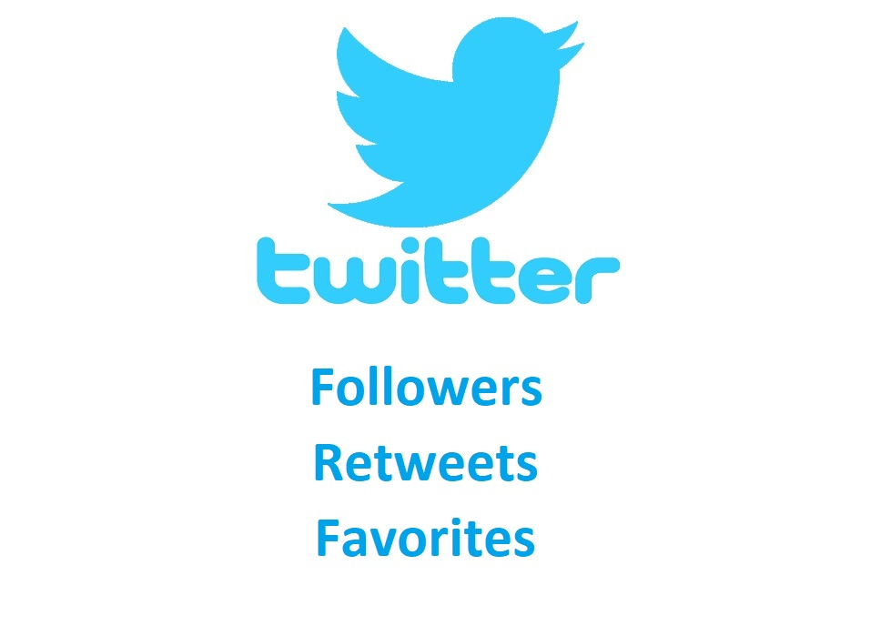 I will provide Twitter Services