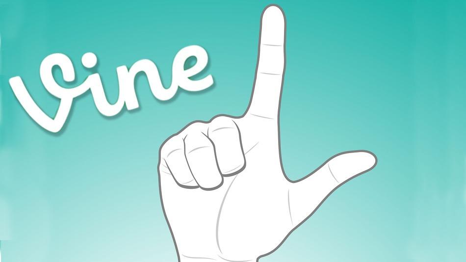 provide 6000+ vine followers/vine likes/revines
