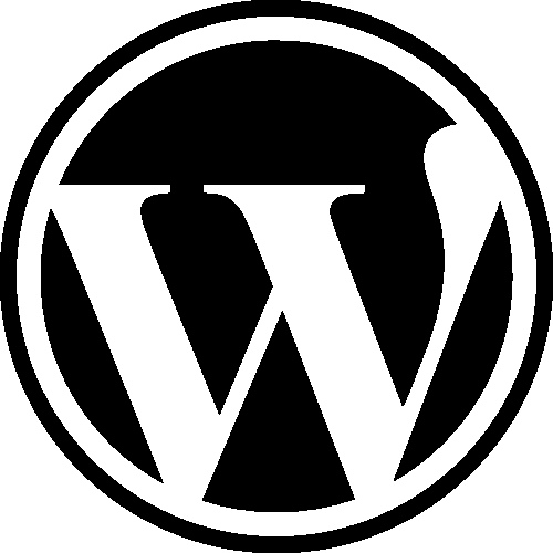Get a Wordress Self Hosted or Blogger Hosted Website With Adavance Custom theme