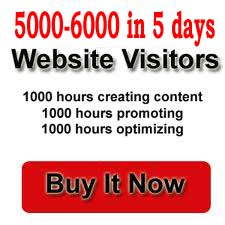 sent you 50000+ Adsense safe real and human traffic from worldwide