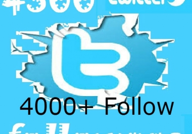 I will get you 4000+ twitter followers